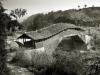 xiaju-bridge